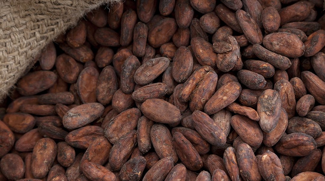90% Reduction in Cocoa Humidity damage